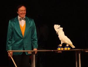 Дрессированный попугай- животные на праздник