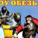 шоу 5 дрессированных обезьян и клоунов