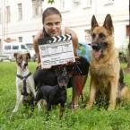 животные актеры