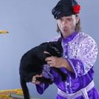 8 (985) 920 - 36 - 97 дрессированные кошки на праздник