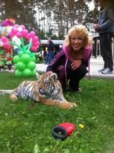8 (985) 920 - 36- 97. Тигр на праздник.