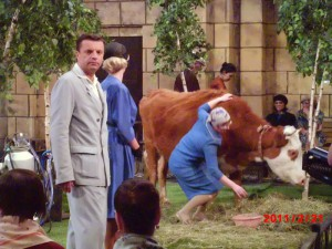 8(985) 920 – 36 – 97 Корова на праздник