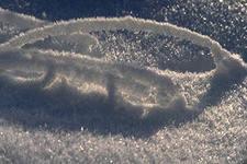 8 (985) 920 - 36- 97. Купить декоративный снег