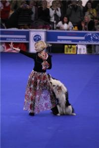 8 (985) 920 - 36- 97. Танцы с собаками