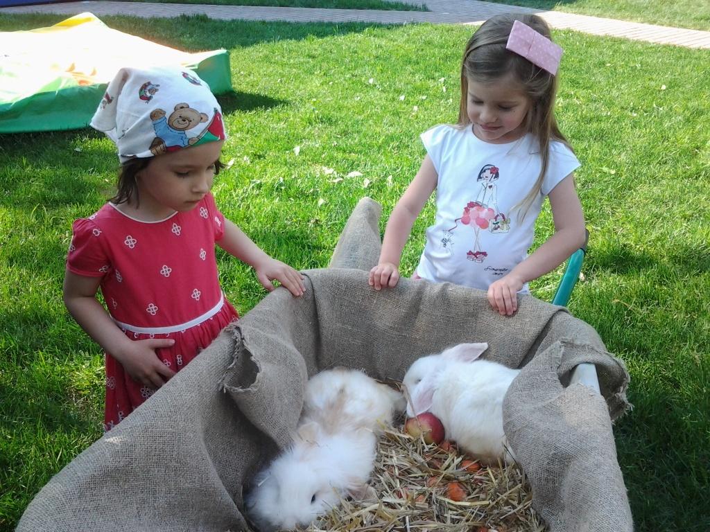 Экскурсии детей на ферму