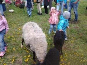 Детская ферма с животными 2