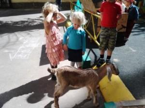 Неделя животных в детском саду 2