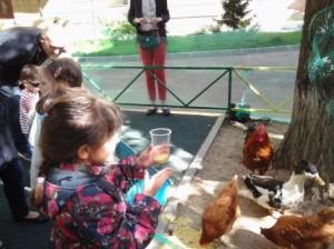 8 (985) 920 - 36- 97.  Ферма для детей видео