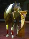 8 (985) 920 - 36- 97. Дрессированные лошади видео