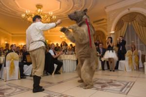 8 (985) 920 - 36- 97. Живой медведь на свадьбу
