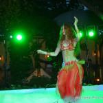 8(985) 920 – 36 – 97  восточные танцы на свадьбу