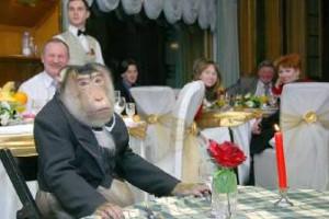 День обезьян 1