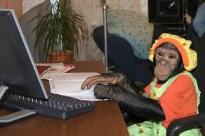 День обезьян 3