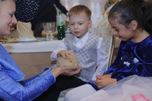 Животные для малышей