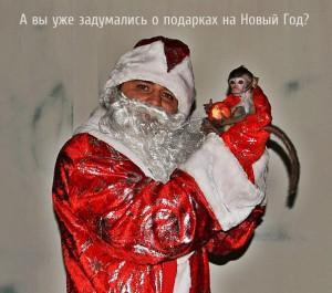 Дед Мороз и обезьянка